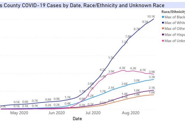 Aug20-Pinellas_Cases_Race_uk.width-800