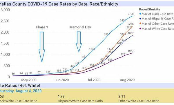 Aug6-Pinellas_case_rates.width-640